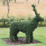 τάρανδος topiary Στοκ εικόνα με δικαίωμα ελεύθερης χρήσης