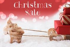 Τάρανδος με το έλκηθρο, κόκκινο υπόβαθρο, πώληση Χριστουγέννων κειμένων Στοκ Εικόνες