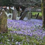 Τάφοι και σταυροί και πέτρες στο παλαιό γοτθικό νεκροταφείο στην Αγγλία Στοκ φωτογραφίες με δικαίωμα ελεύθερης χρήσης