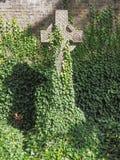 Τάφοι και σταυροί στο νεκροταφείο goth Στοκ Φωτογραφία