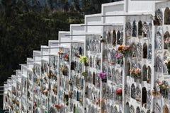 Τάφοι τοίχων στον Ισημερινό Στοκ Εικόνα