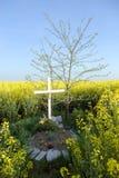 τάφος Στοκ Φωτογραφίες