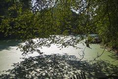 Τάφρος που εισβάλλεται με duckweed στον τοίχο του παλαιού φρουρίου στοκ εικόνες