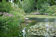 τέλεια λίμνη στοκ εικόνα με δικαίωμα ελεύθερης χρήσης