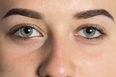 Τέλεια προσοχή δύο ιδιαίτερη ματιών - brows Στοκ Φωτογραφία