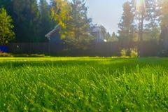 Τέλεια πρόσφατα κομμένος χορτοτάπητας κήπων το καλοκαίρι Στοκ φωτογραφίες με δικαίωμα ελεύθερης χρήσης