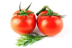 τέλειες ντομάτες δύο Στοκ Εικόνες