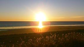 Τέλος θάλασσας της ημέρας στοκ εικόνες