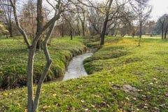 Τέλος του χρυσού φθινοπώρου Στοκ Εικόνες