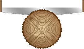 τέμνοντα παλαιά δέντρα πριονιών Στοκ εικόνες με δικαίωμα ελεύθερης χρήσης
