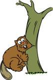 Τέμνον δέντρο καστόρων με τα κινούμενα σχέδια δοντιών Στοκ φωτογραφία με δικαίωμα ελεύθερης χρήσης
