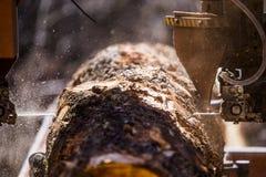 Τέμνον κούτσουρο πριονιστηρίων Στοκ εικόνες με δικαίωμα ελεύθερης χρήσης