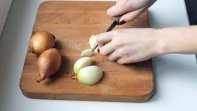 Τέμνον κρεμμύδι γυναικών απόθεμα βίντεο