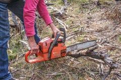 Τέμνον ξύλο με το αλυσιδοπρίονο Στοκ φωτογραφία με δικαίωμα ελεύθερης χρήσης