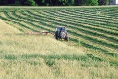 τέμνον πεδίο αγροτών στοκ εικόνα με δικαίωμα ελεύθερης χρήσης