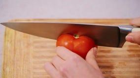 Τέμνουσα κόκκινη ντομάτα στα μικρά κομμάτια απόθεμα βίντεο
