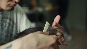 Τέμνουσα τρίχα κομμωτών του χαμογελώντας πελάτη ατόμων στο ινστιτούτο καλλονής απόθεμα βίντεο