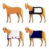 Τέσσερα άλογα με και χωρίς ύφασμα διανυσματική απεικόνιση