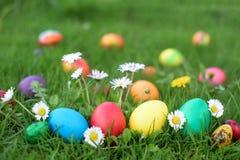 Τέσσερα αυγά Πάσχας κοτών σε μια σειρά στοκ εικόνες