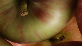 Τέσσερα βιο μήλα απόθεμα βίντεο