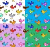 Τέσσερα ζωηρόχρωμα σχέδια με τα αστεία πουλιά κινούμενων σχεδίων Στοκ Εικόνες