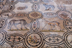 Τέσσερα ζωικά μωσαϊκά μέσα Basilica Di Aquileia Στοκ Εικόνα