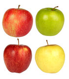 Τέσσερα μήλα σε μια άσπρη ανασκόπηση Στοκ εικόνες με δικαίωμα ελεύθερης χρήσης