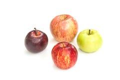 Τέσσερα μήλα χρώματος στοκ εικόνες