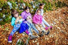 Τέσσερα μικρά κορίτσια που παίζουν με τα κουτάβια στα ξύλα Στοκ φωτογραφία με δικαίωμα ελεύθερης χρήσης