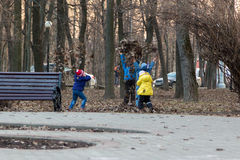 Τέσσερα παιδιά που παίζουν με το φύλλωμα περασμένου χρόνου στο πάρκο Στοκ Εικόνα