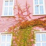 Τέσσερα παράθυρα ένα Στοκ Εικόνες