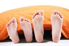 Τέσσερα πόδια κάτω από το γενικό oin άσπρο υπόβαθρο Στοκ Εικόνες