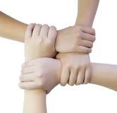 Τέσσερα χέρια που ενώνονται Στοκ Εικόνες