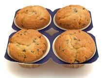 τέσσερα muffins Στοκ Εικόνα