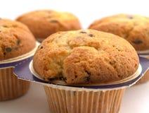 τέσσερα muffins στοκ φωτογραφία