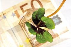 Τέσσερις-βγαλμένο φύλλα τριφύλλι 50 στο ευρο- τραπεζογραμμάτιο, κινηματογράφηση σε πρώτο πλάνο, ανυψωμένη άποψη Στοκ Φωτογραφίες