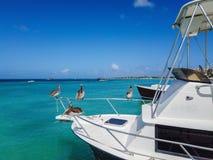 Τέσσερις πελεκάνοι που κάθονται στο κιγκλίδωμα στο μέτωπο ενός αλιευτικού σκάφους στον όμορφο μπλε ωκεανό στοκ φωτογραφίες