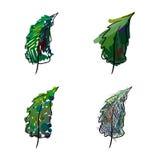 Τέσσερις τυποποιημένες ζωγραφισμένες στο χέρι ερυθρελάτες Στοκ Εικόνες
