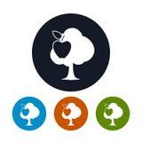 Τέσσερις τύποι στρογγυλών δέντρων της Apple εικονιδίων Στοκ φωτογραφίες με δικαίωμα ελεύθερης χρήσης