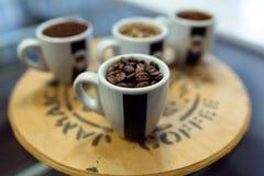 Τέσσερις τύποι φασολιών καφέ στα φλυτζάνια σε ένα οργανικό κατάστημα Στοκ φωτογραφία με δικαίωμα ελεύθερης χρήσης
