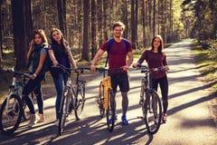 Τέσσερις χαμογελώντας ενήλικοι με τα ποδήλατα στοκ εικόνα