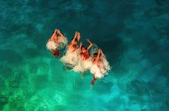 Τέσσερις χορευτές aqua που ανέρχονται στην επιφάνεια νερού Στοκ φωτογραφία με δικαίωμα ελεύθερης χρήσης