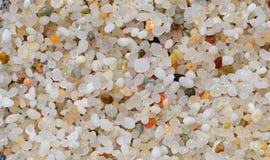 Τέταρτα γαλλονιού άμμου στη Σαρδηνία Στοκ Εικόνες