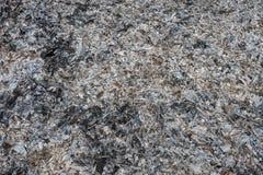 Τέφρες και σκωρίες από το κάψιμο ξύλου και αποβλήτων Στοκ εικόνα με δικαίωμα ελεύθερης χρήσης
