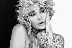 τέχνης ομορφιάς τέλειος χειμώνας makeup μόδας υψηλός βασικός Κορίτσι κόμματος με ασημένιο Hairstyle Στοκ Εικόνες
