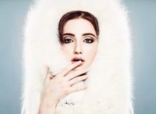 τέχνης ομορφιάς τέλειος χειμώνας makeup μόδας υψηλός βασικός Όμορφη χειμερινή γυναίκα με Makeup Κινηματογράφηση σε πρώτο πλάνο πρ Στοκ Εικόνα