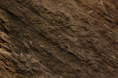 Τέχνη βράχου Gobustan στοκ εικόνα με δικαίωμα ελεύθερης χρήσης