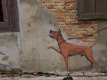 Τέχνη οδών στον τοίχο σε Songkhla Ταϊλάνδη Στοκ φωτογραφία με δικαίωμα ελεύθερης χρήσης