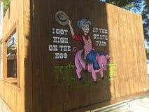 Τέχνη τοίχων στην κρατική έκθεση στοκ εικόνες με δικαίωμα ελεύθερης χρήσης