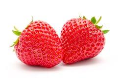 Τέλεια κόκκινη ώριμη φράουλα δύο που απομονώνεται Στοκ φωτογραφία με δικαίωμα ελεύθερης χρήσης
